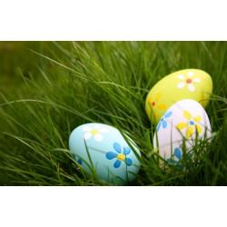 Доставка и работно време по Великден